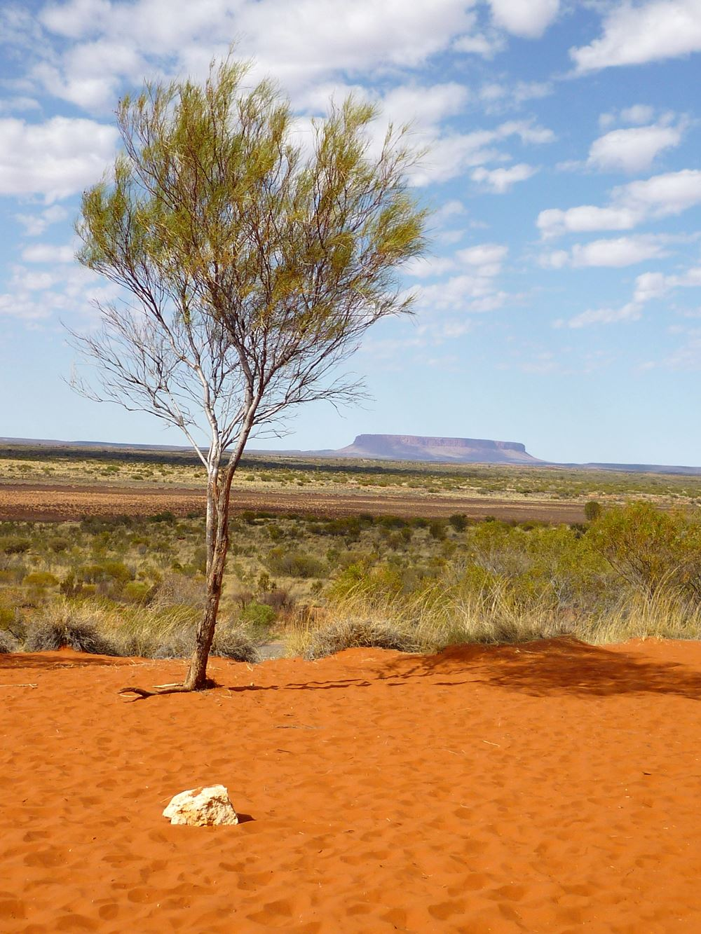 Outback Mentalität