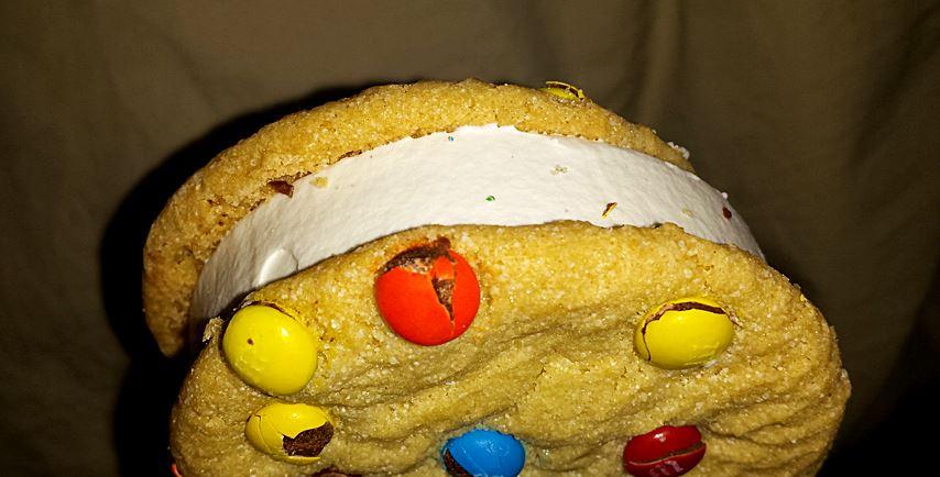eiscreme-sandwich-mit-keksen-und-mms