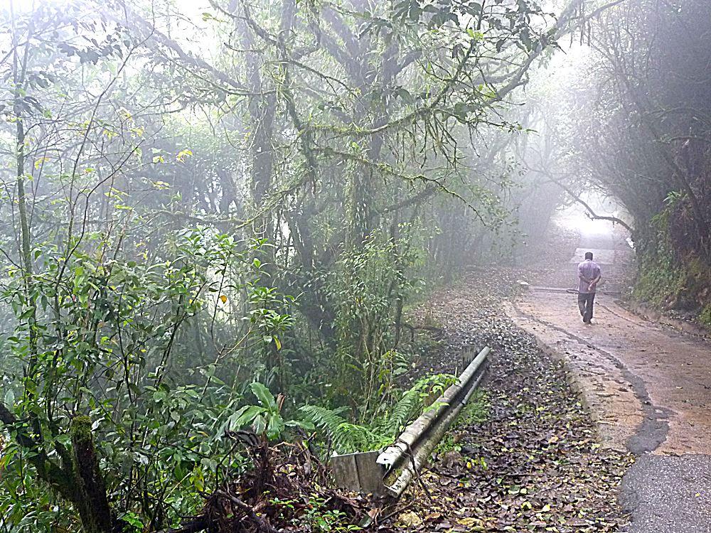 lieblingsfoto-malaysia-reiseblog
