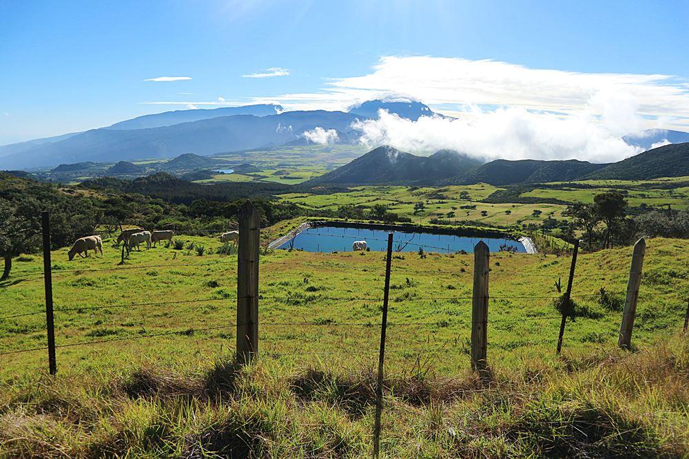 Weide auf der Strecke zum Vulkan