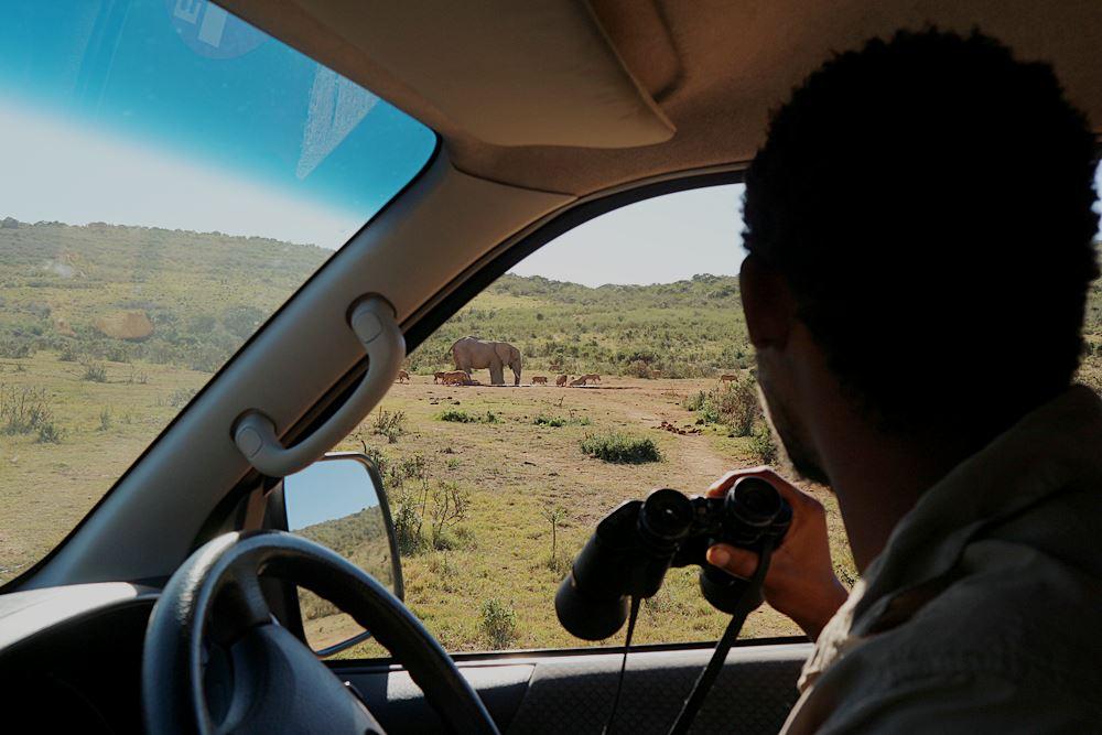 Safari Tour im Addo Elephant Park