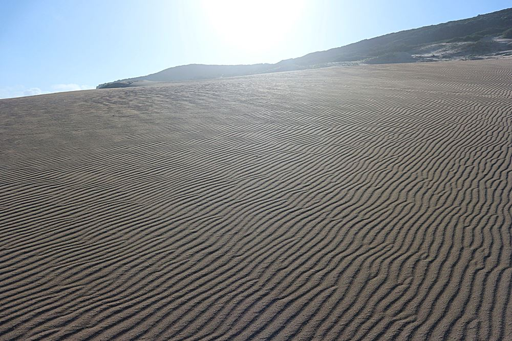 Wanderung ueber Sandduenen