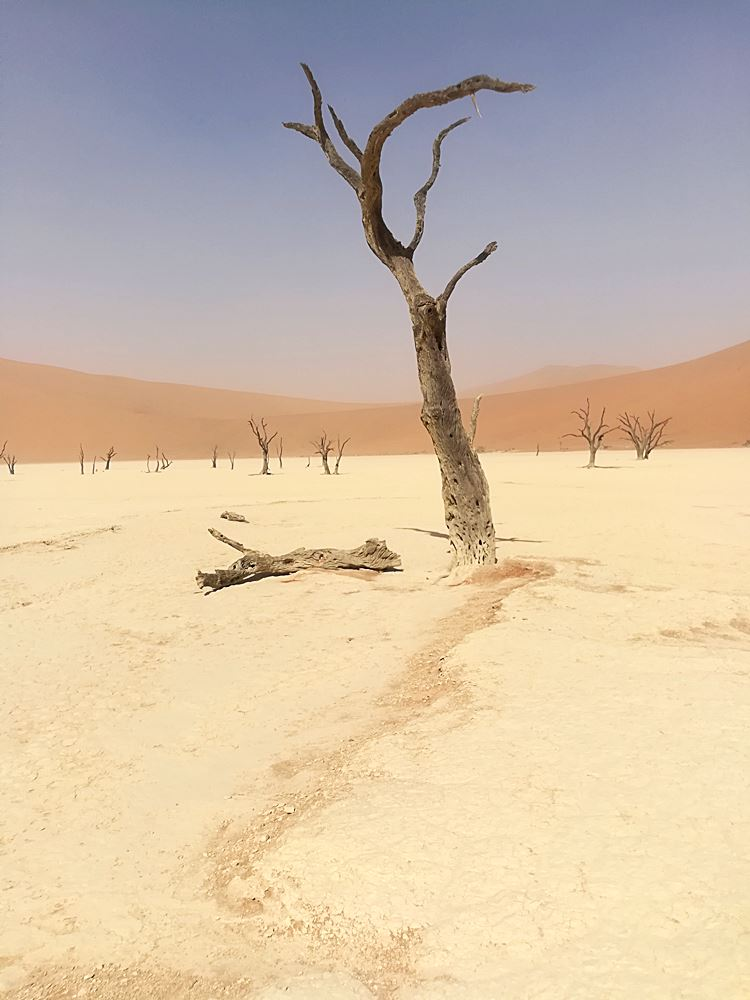 Dead Valley Namibia