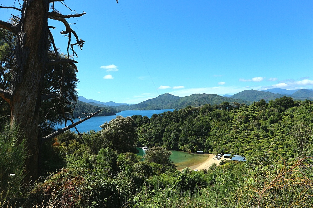 Marlborough Sounds Suedinsel