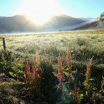 Sonnenaufgang Suedinsel Neuseeland