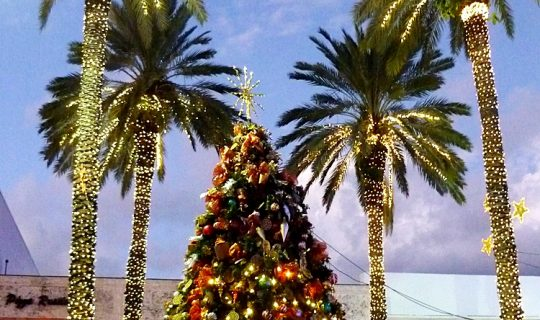 Weihnachtsbaum inmitten Palmen