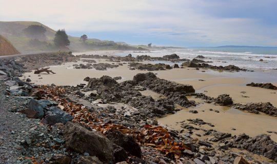 Von Höhlen und Sanddünen und wie Neuseeland überzeugt