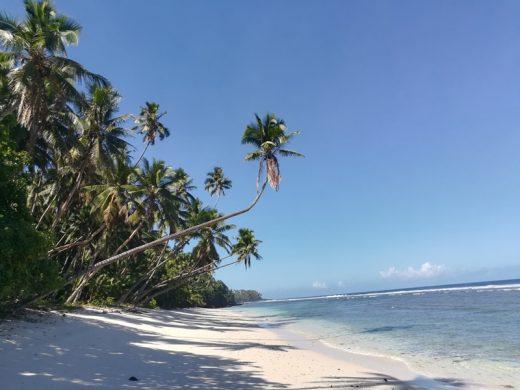 unberuehrter Strand Samoa