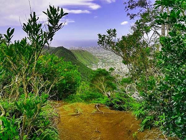 Waahila Ridge Trail