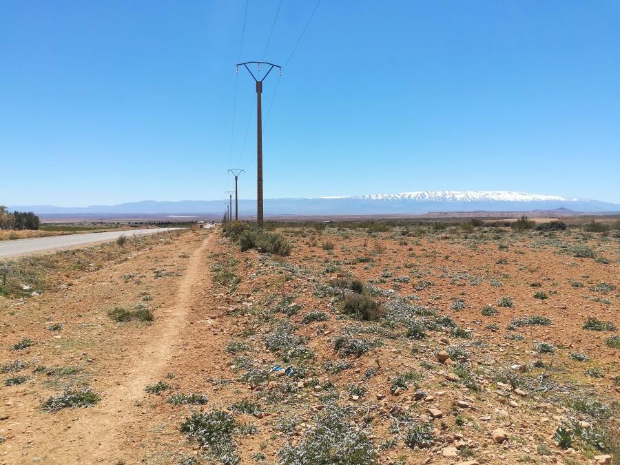Kahle Landschaft