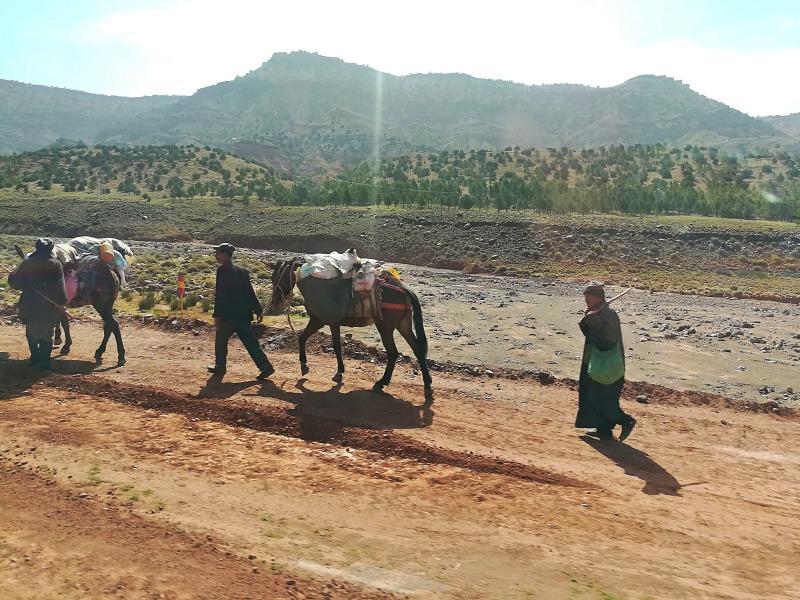 Nomaden Marokko